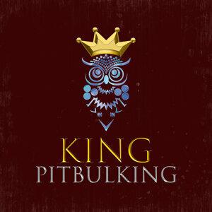 PitbulKing 歌手頭像