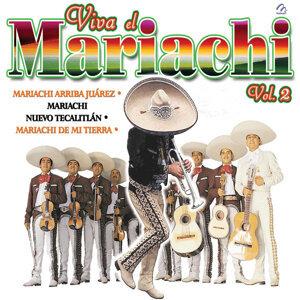 Mariachi Arriba Juarez | Mariachi Nuevo Tecalitlan | Mariachi De Mi Tierra 歌手頭像