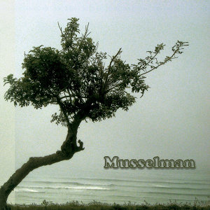 Musselman 歌手頭像