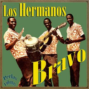 Los Hermanos Bravo 歌手頭像