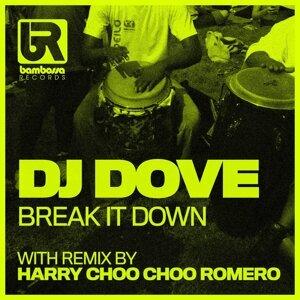 DJ DOVE