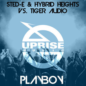 Sted-E & Hybrid Heights vs. Tiger Audio 歌手頭像