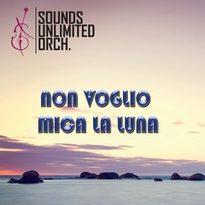 Sounds Unlimited Orchestra 歌手頭像