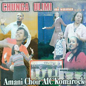 Amani Choir AIC Komarock 歌手頭像