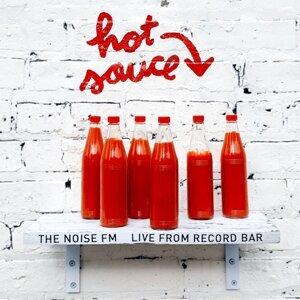 The Noise FM 歌手頭像