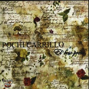 Pochi Carrillo 歌手頭像