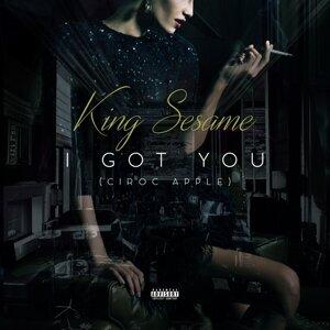 King Sesame 歌手頭像