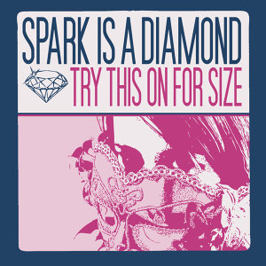 Spark Is A Diamond 歌手頭像
