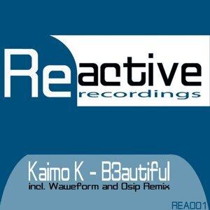 Kaimo K 歌手頭像