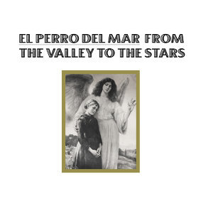 El Perro Del Mar 歌手頭像