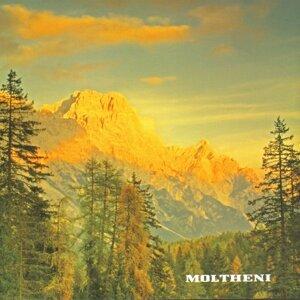 Moltheni 歌手頭像