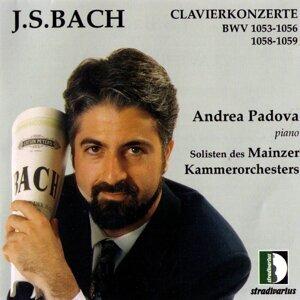 Solisten Des Mainzer Kammerorchesters, Andrea Padova