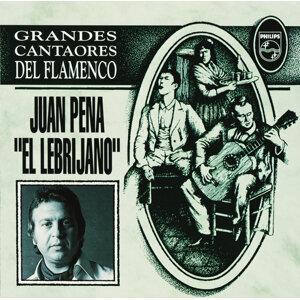 Juan Pena 歌手頭像
