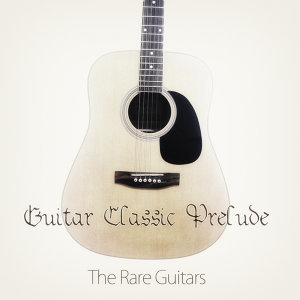 The Rare Guitars 歌手頭像