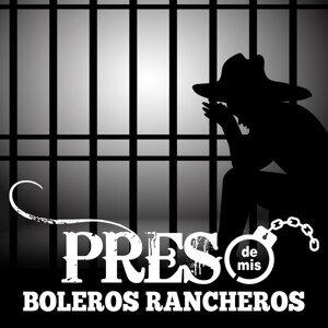 Mariachi Vargas de Guadalajara, Mariachi Los Jinetes de Jalisco, Mariachi Águilas de Plata 歌手頭像