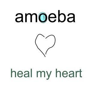 Amoeba 歌手頭像