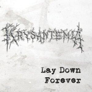 Krysantemia 歌手頭像