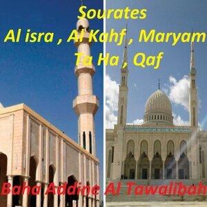 Baha Addine Al Tawalibah 歌手頭像