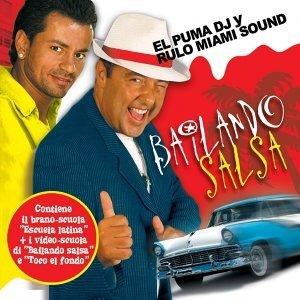 El Puma DJ Y Rulo Miami Sound 歌手頭像