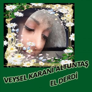 Veysel Karani Altuntaş 歌手頭像