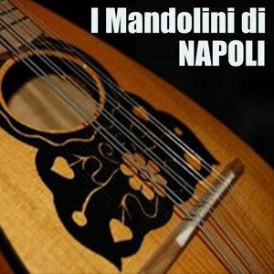 I mandolini di Napoli 歌手頭像