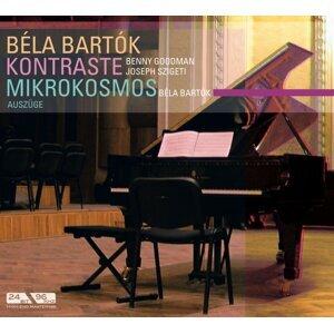 Bela Bartok 歌手頭像