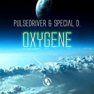 Pulsedriver, Special D. 歌手頭像
