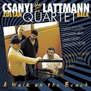 Csanyi Zoltán, Lattmann Quartet 歌手頭像