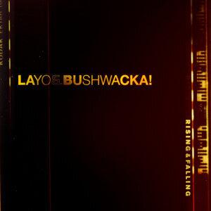 Layo & Bushwacka! 歌手頭像