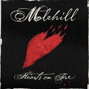 Molehill 歌手頭像