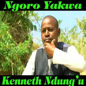 Kenneth Ndung'u 歌手頭像