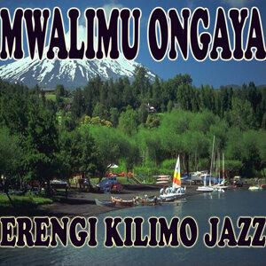 Erengi Kilimo Jazz 歌手頭像