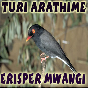 Erisper Mwangi 歌手頭像