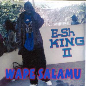 E-sh King II 歌手頭像