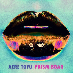 Prism Boar 歌手頭像