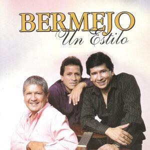 Bermejo 歌手頭像