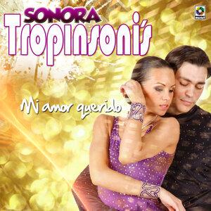 Sonora Tropisoni's 歌手頭像