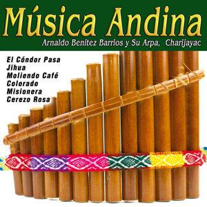 Arnaldo Benítez Barrios y Su Arpa|Charijayac 歌手頭像
