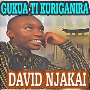David Njakai 歌手頭像
