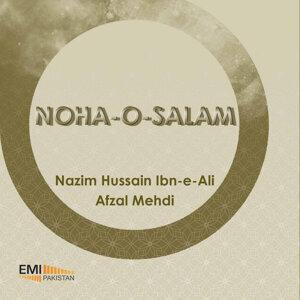 Nazim Hussain - Afzal Mehdi 歌手頭像