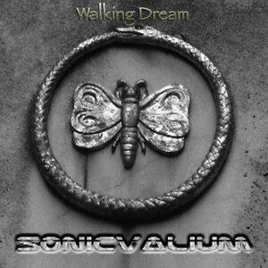 Sonic Valium 歌手頭像