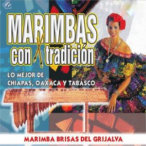 Marimba Brisas Del Grijalva 歌手頭像