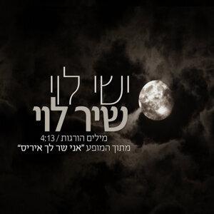 ישי לוי ושיר לוי 歌手頭像