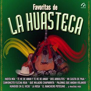 Melodia Huasteca | Los Tostones | Los Potosinos 歌手頭像