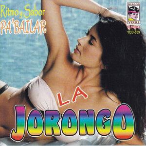 La Jorongo 歌手頭像