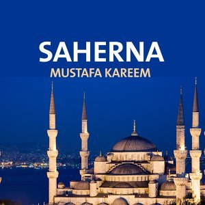 Mustafa Kareem 歌手頭像