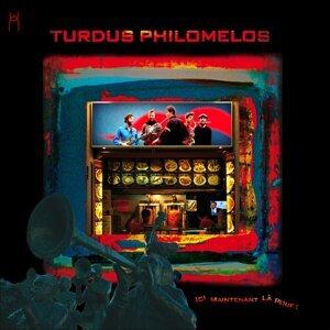 Turdus Philomelos
