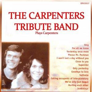 The Carpenters Tribute Band 歌手頭像