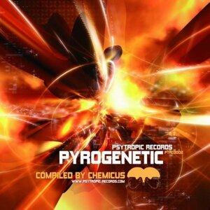 Pyrogenetic 歌手頭像