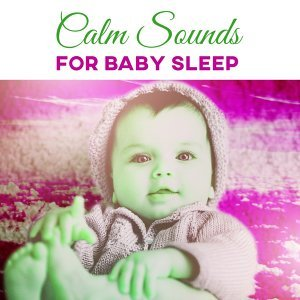Calm Lullabies Universe 歌手頭像